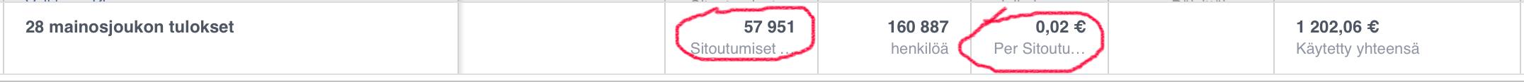 Facebook-mainonnan tuloksia, Fiercer Media Oy
